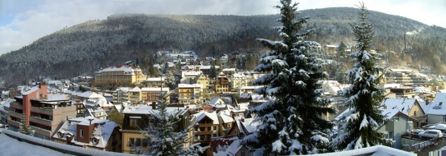 Panoramablick Bad Wildbad